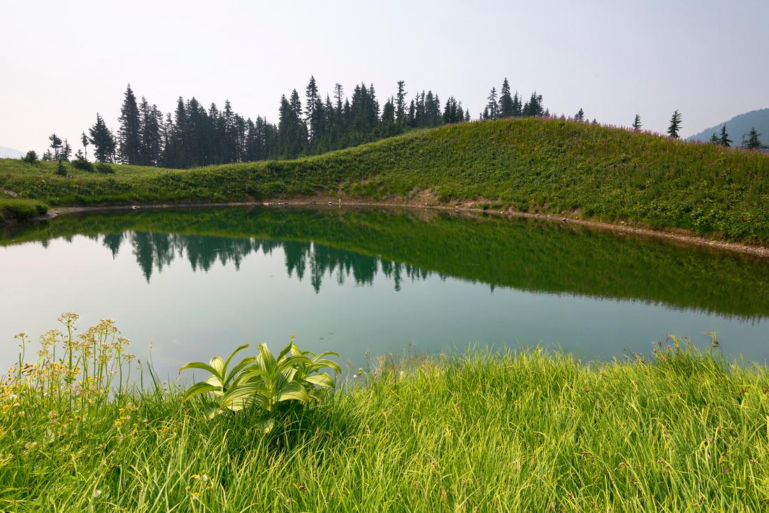 Spoon Lake