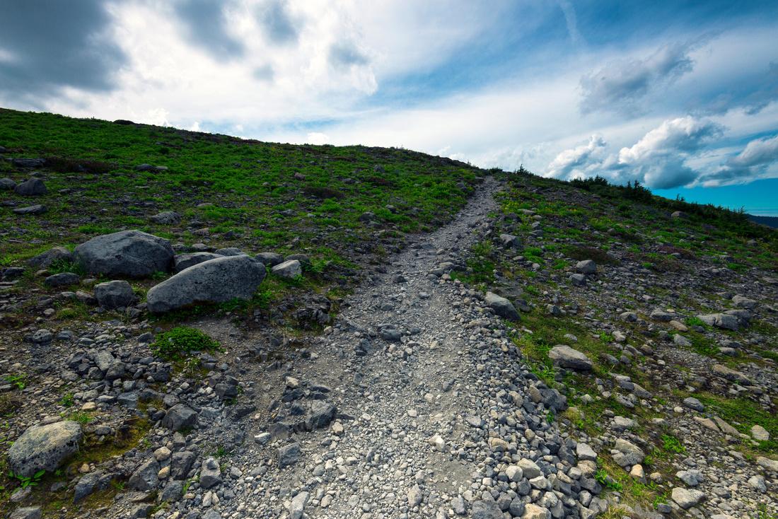 Trails Ahead