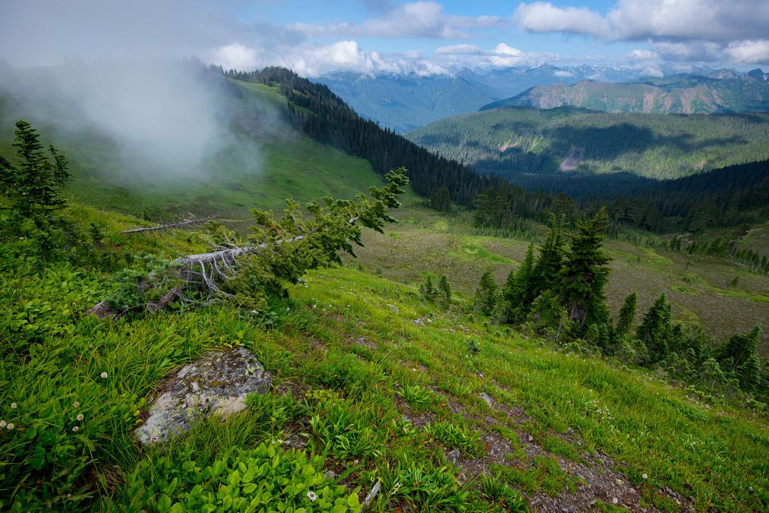Skyline Divide Trail, Mt. Baker Area, Washington State, USA.