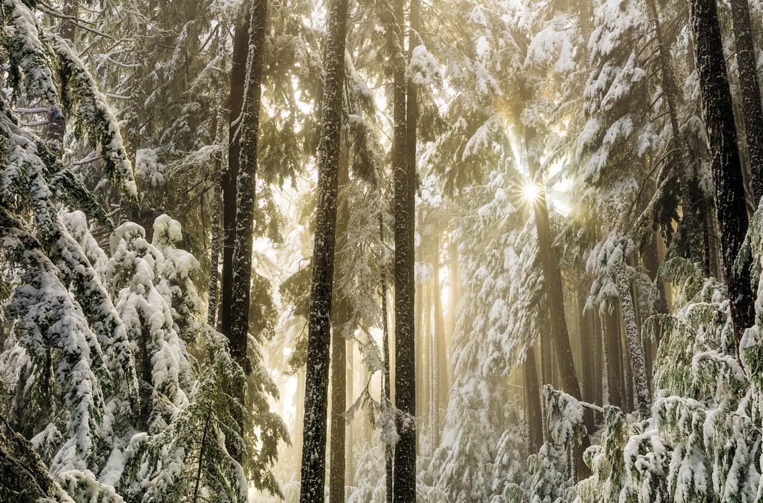 Snow Beams